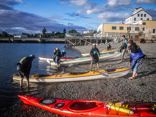 Bellingham Harbor with Moondance Kayaks-69