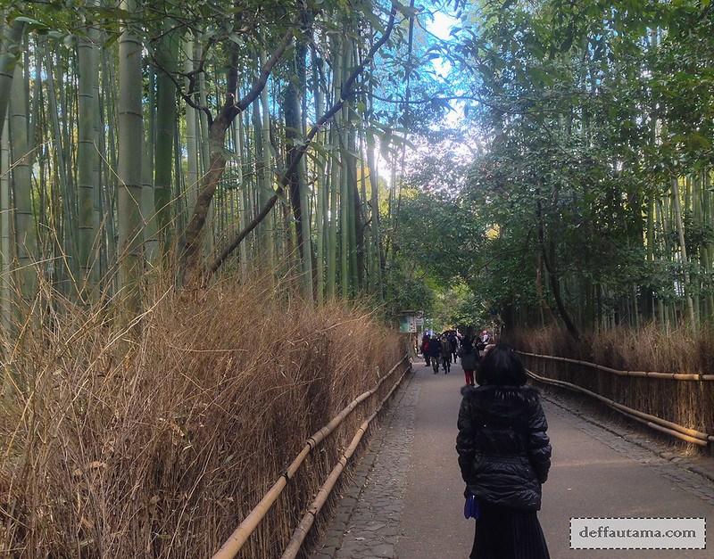 9 Hari Babymoon ke Jepang - Arashiyama Bamboo Grove