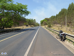 Regional SP-332 Highway between Santa Rosa de Viterbo and Tambaú