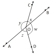 NCERT Maths Solutions For Class 9 Lines and Angles Hindi Medium 6.1 4