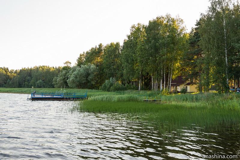 Берег озера Мстино, Тверская область