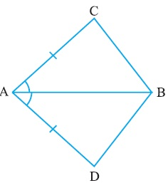 NCERT Solutions For Class 9 Maths Triangles Hindi Medium 7.1 1
