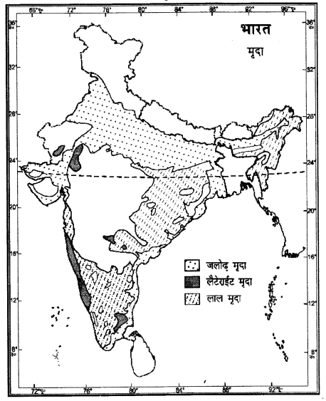 NCERT Solutions for Class 11 Geography Indian Physical Environment Chapter 6 (Hindi Medium) 3
