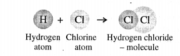 ICSE Solutions for Class 6 History and Civics - Atomic Structure-02