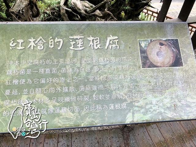 TaiwanTour_278