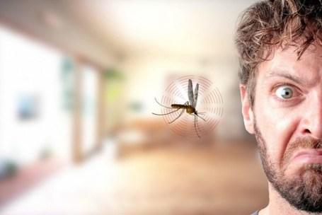 Kebiasaan Ini Bikin Nyamuk Sering Menghinggapi Tubuhmu