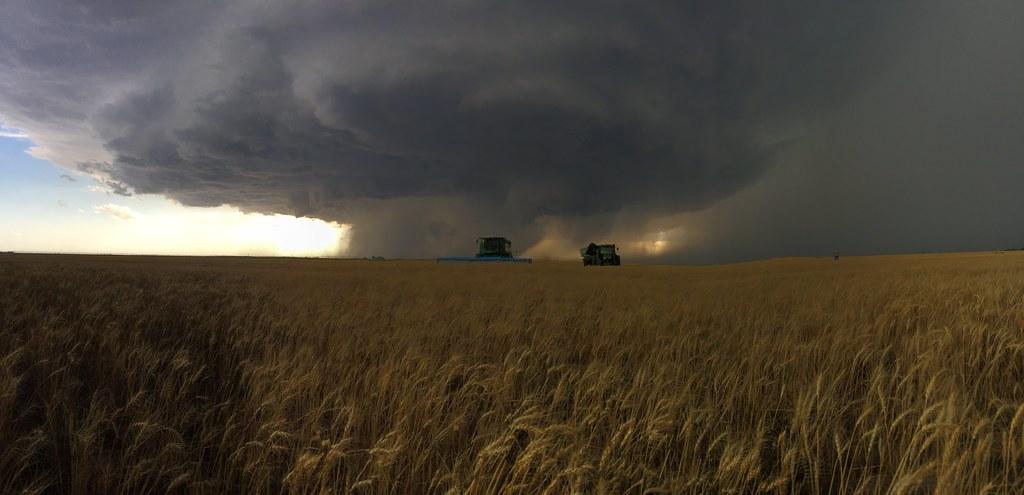 High Plains Harvesting 2018 - TJ