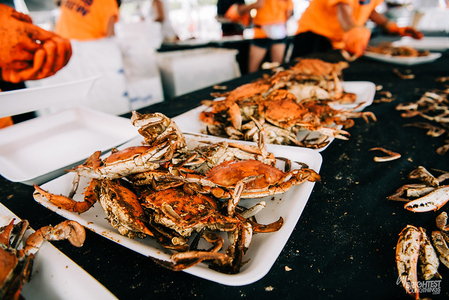Chesapeake Crab and Beer Festival-3