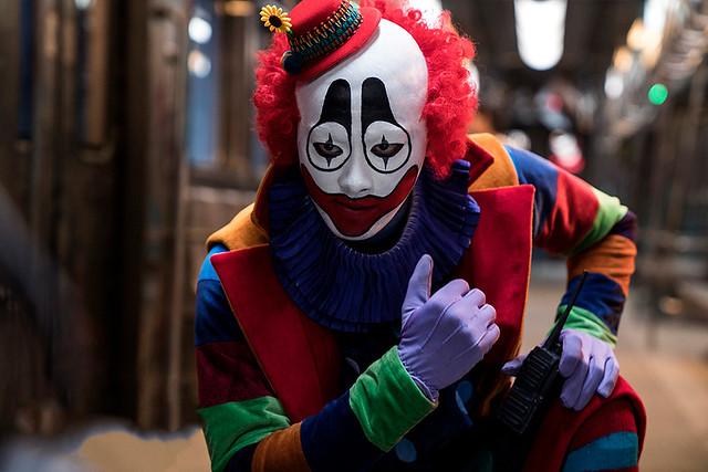 Animal World Clown