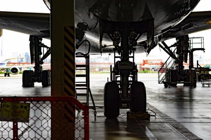 180722 ANA機体工場見学「B777-300の下を潜る」