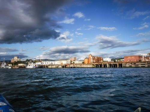 Bellingham Harbor with Moondance Kayaks-52