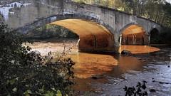 The Bridge At Rio de Sangre