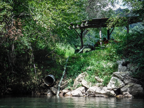 French Broad River - Rosman to Island Ford-200