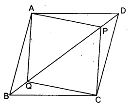 UP Board Solutions for Class 9 Maths Chapter 8 Quadrilaterals 8.1 9