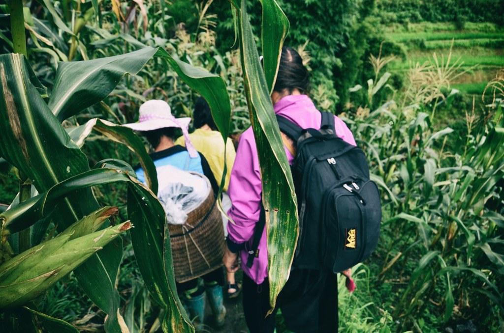 Hmong,-sapa,-hills,-vietnam