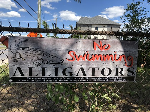 Carleton Place - No Alligators