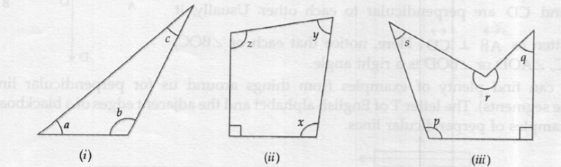 ML Aggarwal ICSE Solutions for Class 6 Maths Chapter 11 Understanding Elementary Shapes Ex 11.2 Solution 07
