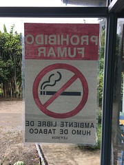 August 31, 2018 / Smoking Prohibited Sign at Pool