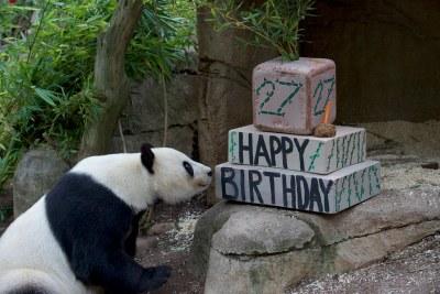 Happy 27th Birthday  Bai Yun