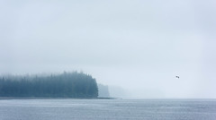 1808_7069 The Fogbound Strait