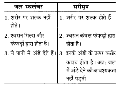 UP Board Solutions for Class 9 Science Chapter 7 Diversity in Living Organisms l 2