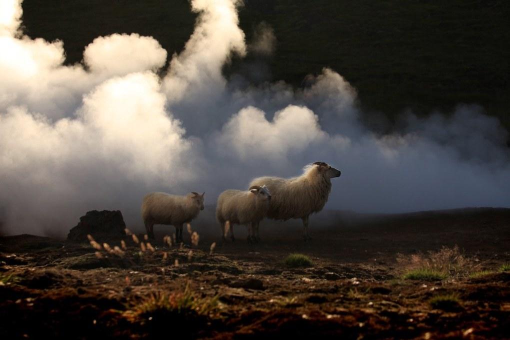Islanti 2012