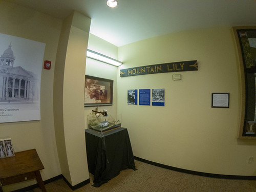Mountain Lily Exhibit-003