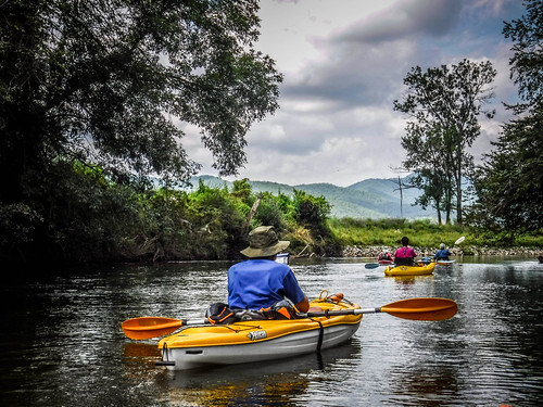 French Broad River - Rosman to Island Ford-201