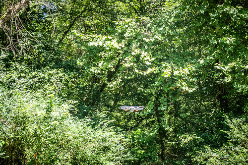 Jim Leavell with Drone at French Broad River-005