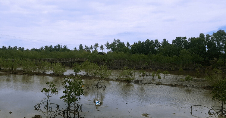 Emerald Beach and Nature Park, 50+ Things to Do in Puerto Princesa, Tourist Spots Survive Travel (4)