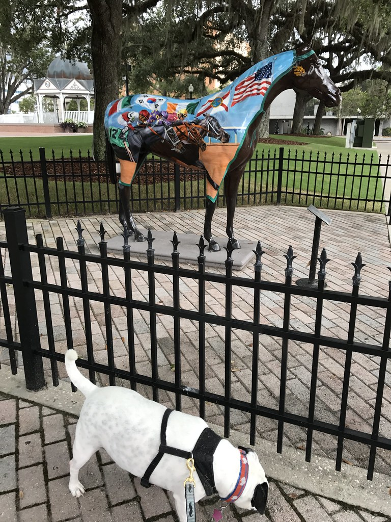Travel to Ocala with a Dog, Horse Fever Statue in Downtown Ocala, Fla., Aug. 2017