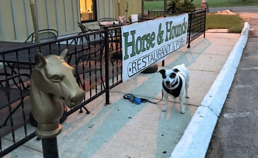 Travel to Ocala with a Dog, Horse & Hounds Restaurant, Ocala, Fla., Aug. 2017