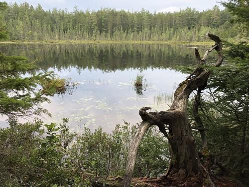 Samuel de Champlain small lake