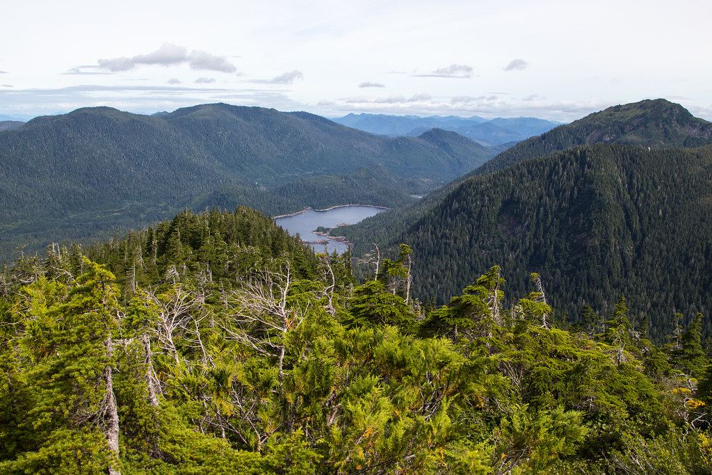 Hiking the Minerva Mountain Trail - Tongass National Forest