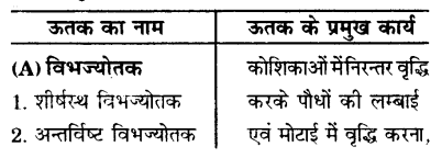 UP Board Solutions for Class 9 Science Chapter 6 Tissues l 1