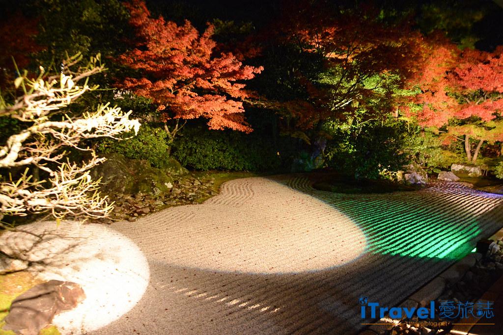 京都賞楓景點 圓德院 (1)