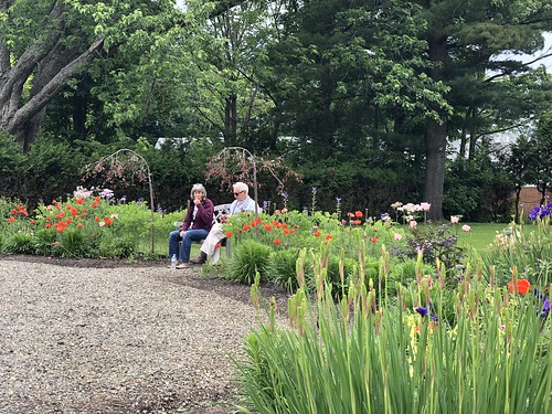 Stainstead - garden with Linda and Colin