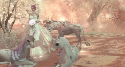 ♥♥♥ LTModa Wedding dress photo contest ♥♥♥