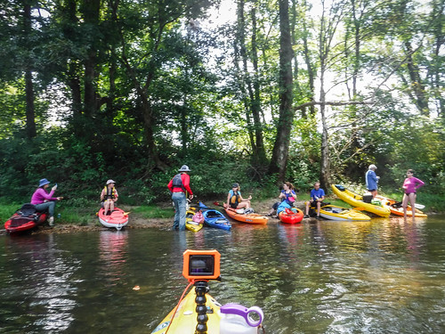 French Broad River - Rosman to Island Ford-182