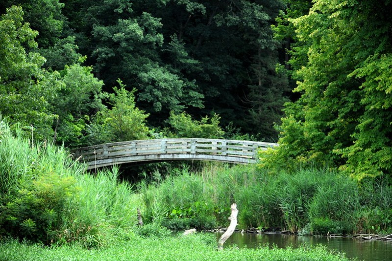 Bridge over creek at Starved Rock State Park