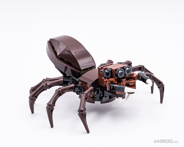 REVIEW LEGO 75950 Harry Potter Aragog's Lair