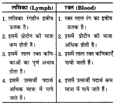 UP Board Solutions for Class 9 Science Chapter 6 Tissues s 10