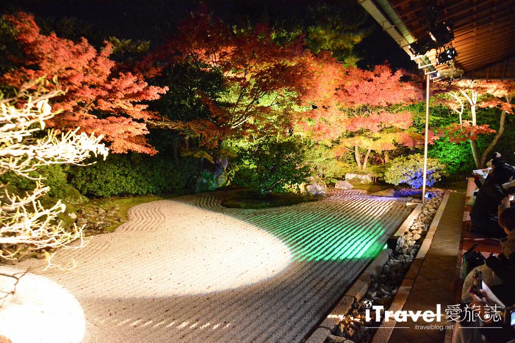 京都賞楓景點 圓德院 (13)