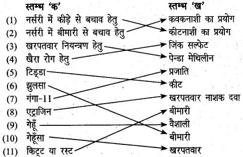 UP Board Solutions for Class 6 Agricultural Science Chapter 7 मुख्य फसलों की खेती