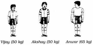 NCERT Solutions for Class 6 English Honeysuckle Chapter 10 The Banyan Tree 4