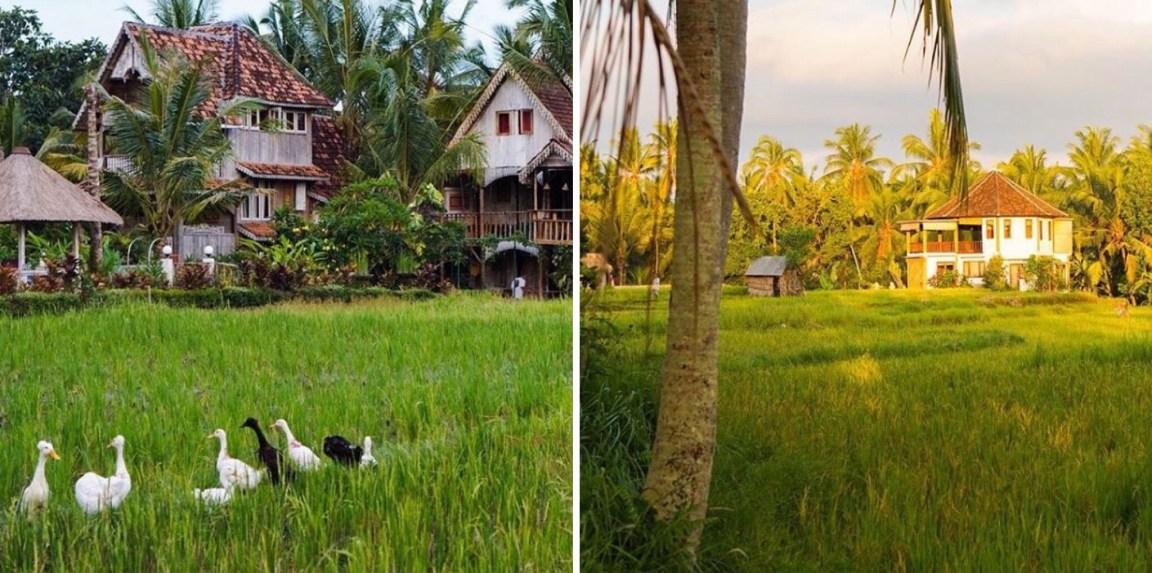 Bali - Kaukana kotoa
