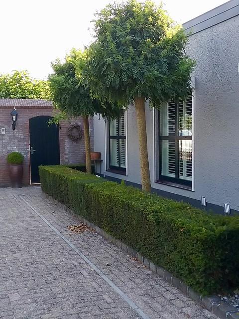 Zijkant bungalow heg tuinpoort