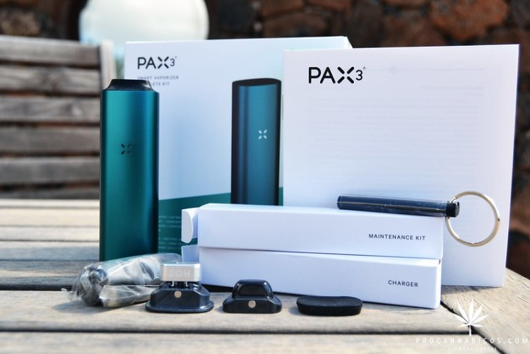 Pax3 (3)