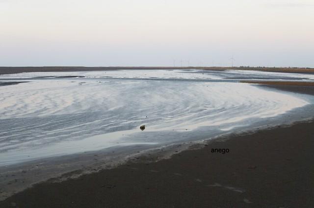 高美湿地 風と流れ