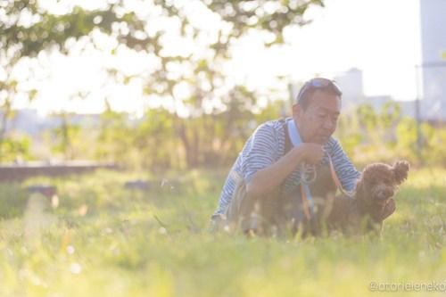 アトリエイエネコ Cat Photographer 45470036401_1dc1387791 1日1ワン!安満人倶楽部(あまんどクラブ)10/21わんこと一緒にクリーンキャンペーンに行ってきた! 1日1猫!  高槻 犬 安満人倶楽部 子猫 大阪 写真 保護猫 保護犬 スマホ Kitten dog Cute cat